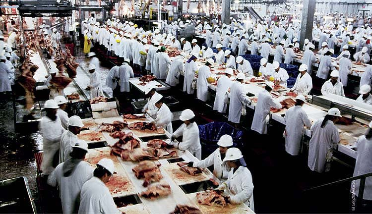 large scale meat processing